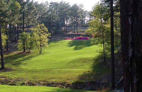 Maples Golf 2015 Guide_LO2 (002)
